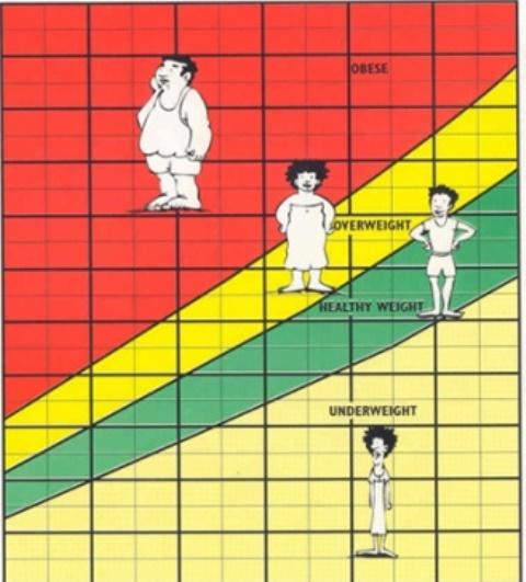 495px-BMI-Chart585
